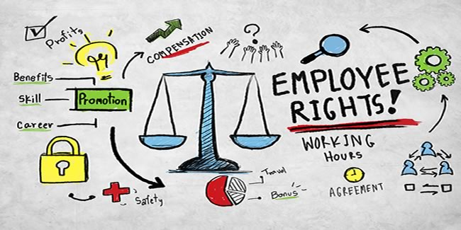 Employment Law Blog